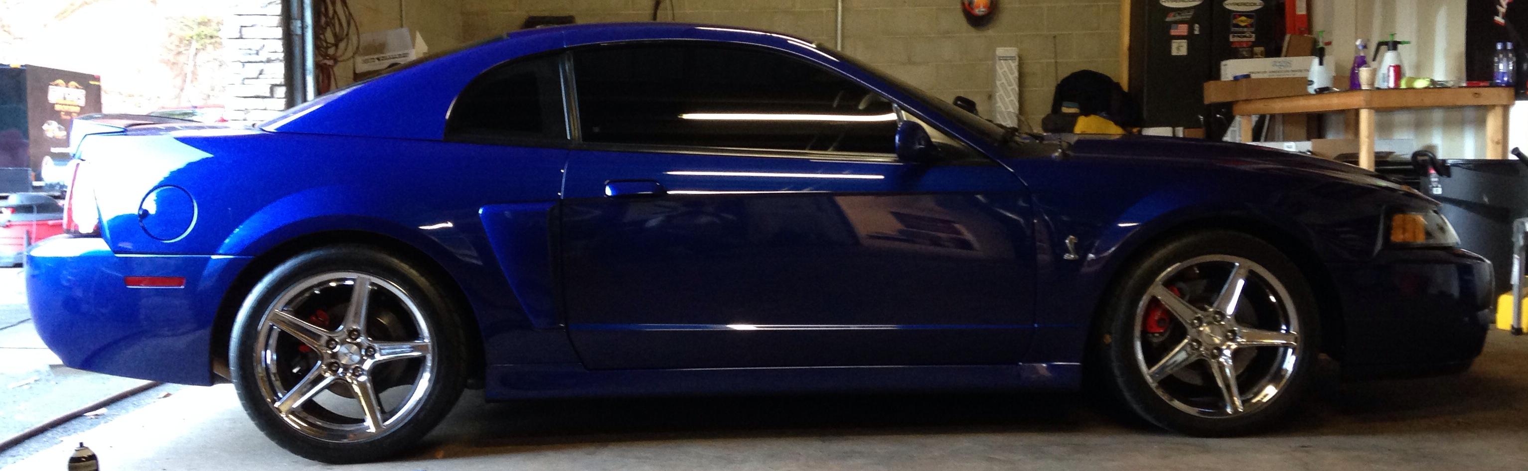2004 Mustang Cobra Solar Shield Of Seneca